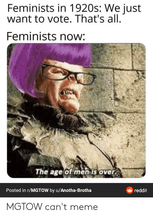Chin - Feminists in 1920s: We just want to vote. That's all. Feminists now: The age of men is over. Posted in r/MGTOW by u/Anotha-Brotha ở reddit MGTOW can't meme