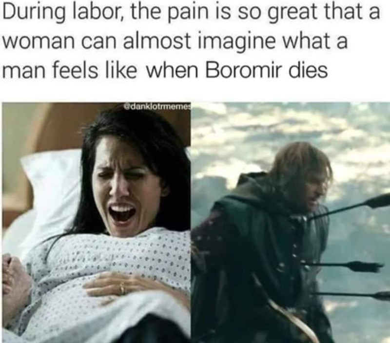 Human - During labor, the pain is so great that a woman can almost imagine what a man feels like when Boromir dies edanklotrmemes