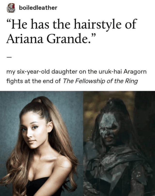 """Hair - boiledleather """"He has the hairstyle of Ariana Grande."""" my six-year-old daughter on the uruk-hai Aragorn fights at the end of The Fellowship of the Ring"""