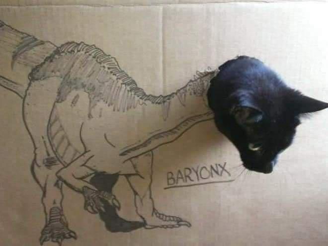 Cat - BARYONX