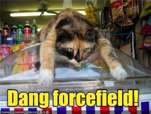 Cat - SIM Dang forcefield! ICANHASCHEEZE URGER.COMG
