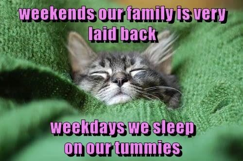 Cat - weekends our family is very laid back weekuays we sleep on our tummies