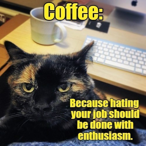 Cat - Coffee: Because hating your job should be done with enthusiasm.