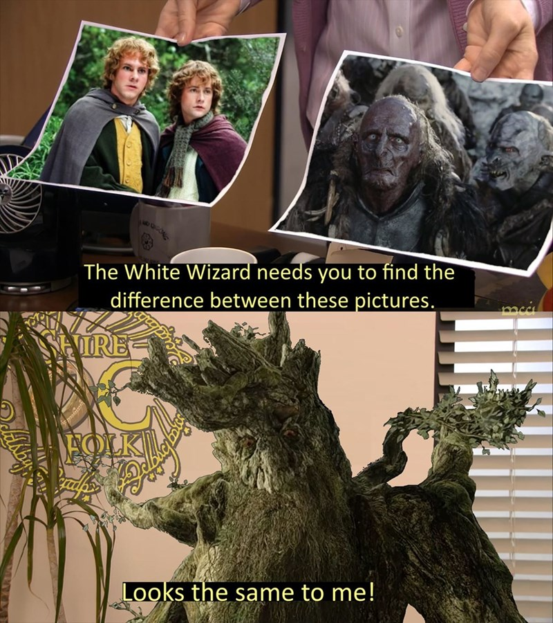 Photograph - CONG The White Wizard needs you to find the difference between these pictures. SEORE DEOLK Looks the same to me!