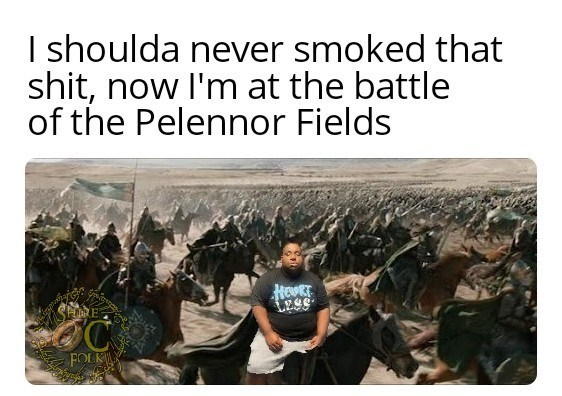 Ecoregion - I shoulda never smoked that shit, now I'm at the battle of the Pelennor Fields HORE FOLK
