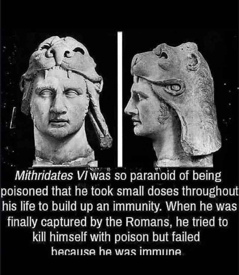 Forehead - Mithridates VI was so paranoid of being poisoned that he took small doses throughout his life to build up an immunity. When he was finally captured by the Romans, he tried to kill himself with poison but failed because he was immune.