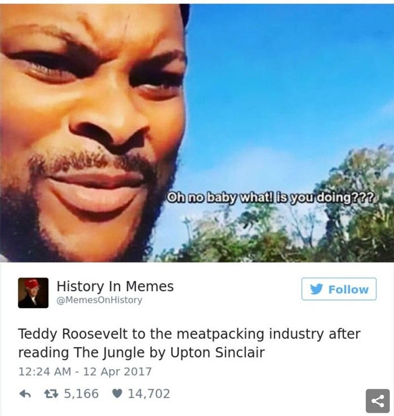 Product - Oh no baby what is you doing??? History In Memes Follow @MemesOnHistory Teddy Roosevelt to the meatpacking industry after reading The Jungle by Upton Sinclair 12:24 AM - 12 Apr 2017 6 17 5,166 v 14,702