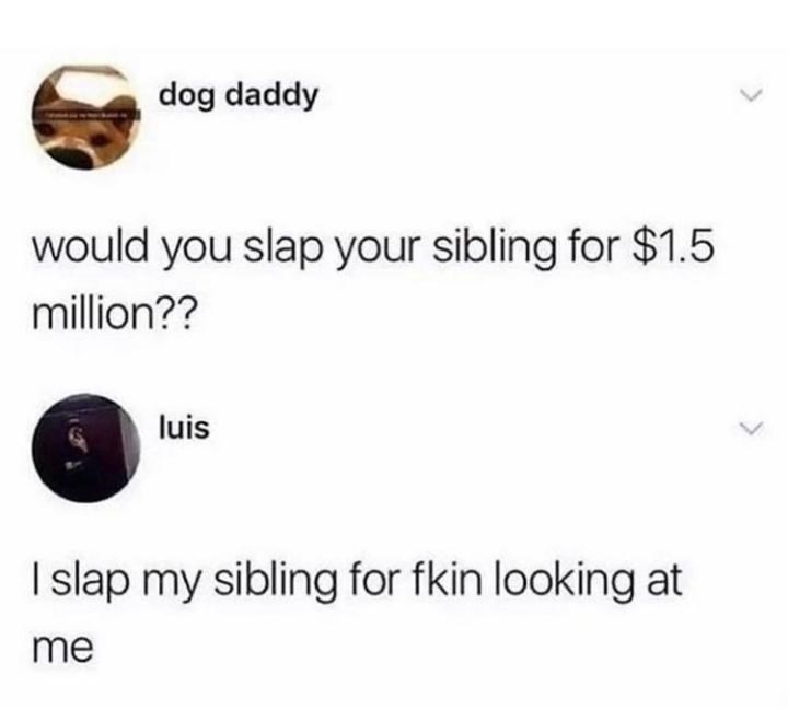 Font - dog daddy would you slap your sibling for $1.5 million?? luis I lap my sibling for fkin looking at me