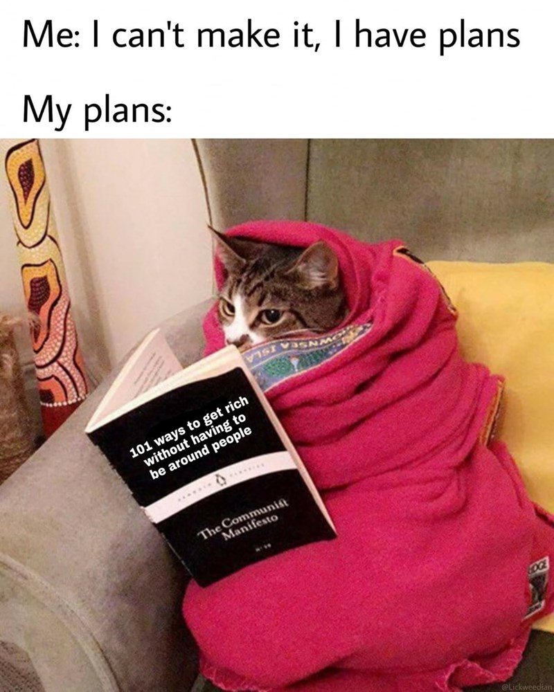 Cat - Me: I can't make it, I have plans My plans: 101 ways to get rich without having to be around people SASSO BI ..... The Communist Manifesto OGE @Lickweedian