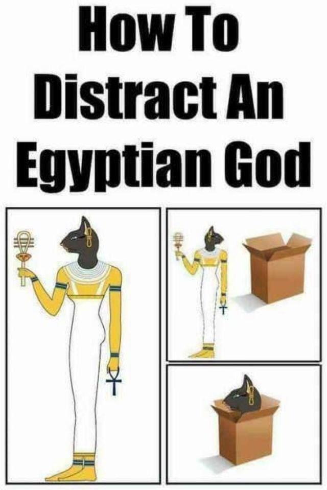Sleeve - How To OW Distract An Egyptian God