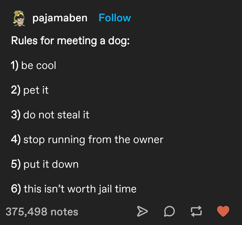 Font - pajamaben Follow Rules for meeting a dog: 1) be cool 2) pet it 3) do not steal it 4) stop running from the owner 5) put it down 6) this isn't worth jail time 375,498 notes