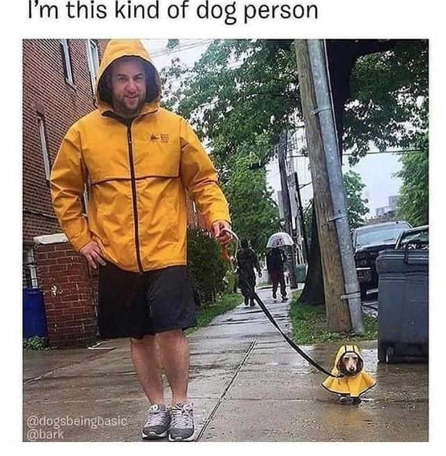 Shoe - I'm this kind of dog person @dogsbeingbasio @bark