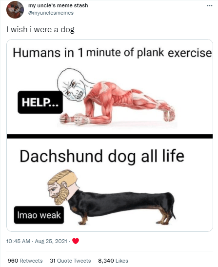 Gesture - my uncle's meme stash ... emyunclesmemes I wish i were a dog Humans in 1 minute of plank exercise HELP... Dachshund dog all life Imao weak 10:45 AM - Aug 25, 2021 - 960 Retweets 31 Quote Tweets 8,340 Likes
