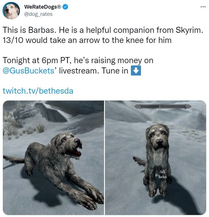 Vertebrate - WeRateDogs® @dog_rates This is Barbas. He is a helpful companion from Skyrim. 13/10 would take an arrow to the knee for him Tonight at 6pm PT, he's raising money on @GusBuckets' livestream. Tune in twitch.tv/bethesda E Talk Barbas