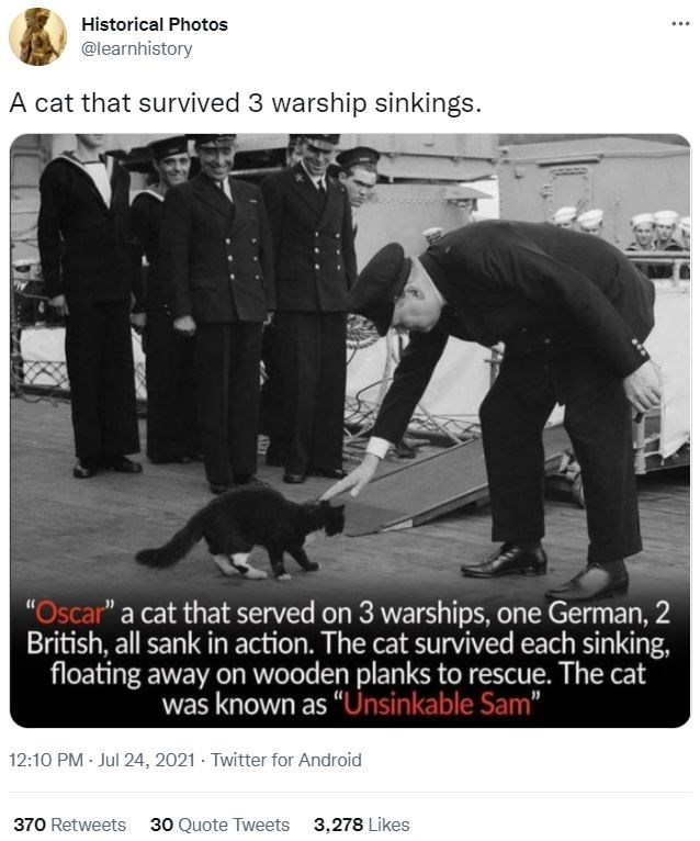 """Dog - Historical Photos ... @learnhistory A cat that survived 3 warship sinkings. """"Oscar"""" a cat that served on 3 warships, one German, 2 British, all sank in action. The cat survived each sinking, floating away on wooden planks to rescue. The cat was known as """"Unsinkable Sam"""" 12:10 PM Jul 24, 2021 · Twitter for Android 370 Retweets 30 Quote Tweets 3,278 Likes"""