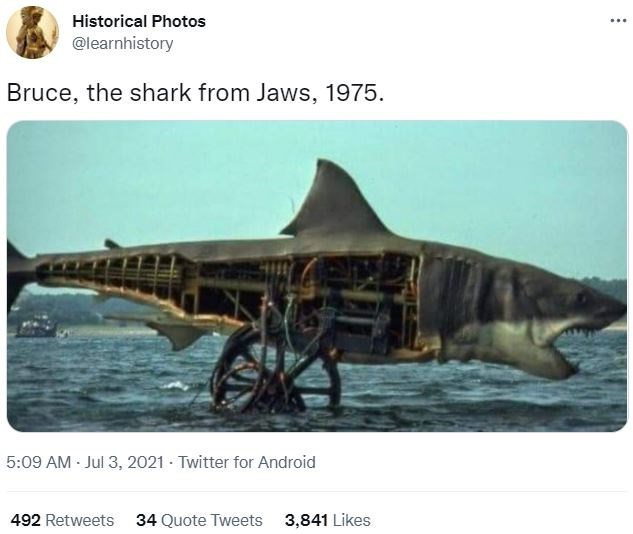 Water - Historical Photos ... @learnhistory Bruce, the shark from Jaws, 1975. 5:09 AM · Jul 3, 2021 - Twitter for Android 492 Retweets 34 Quote Tweets 3,841 Likes