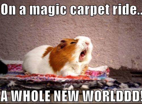 Organism - On a magic carpet ride.. A WHOLE NEW WORLDDD!