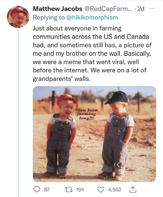 """Product - Matthew Jacobs @RedCapFarm... 2d Replying to @hikikomorphism ... Just about everyone in farming communities across the US and Canada had, and sometimes still has, a picture of me and my brother on the wall. Basically, we were a meme that went viral, well before the internet. We were on a lot of grandparents' walls. """"You been farming long? O 87 17 194 4,552"""