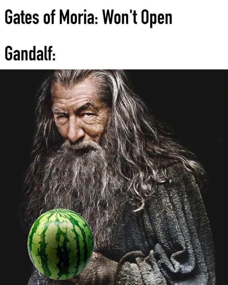 Hairstyle - Gates of Moria: Won't Open Gandalf: