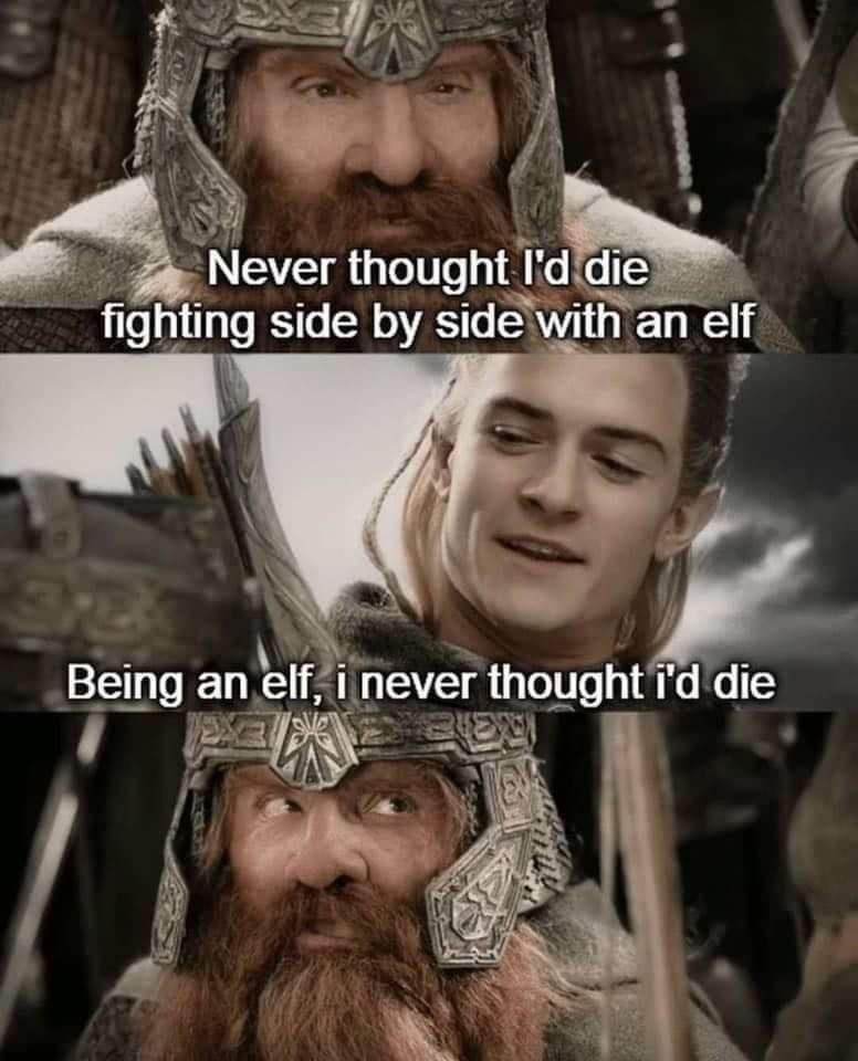 Skin - Never thought Il'd die fighting side by side with an elf Being an elf, i never thought i'd die