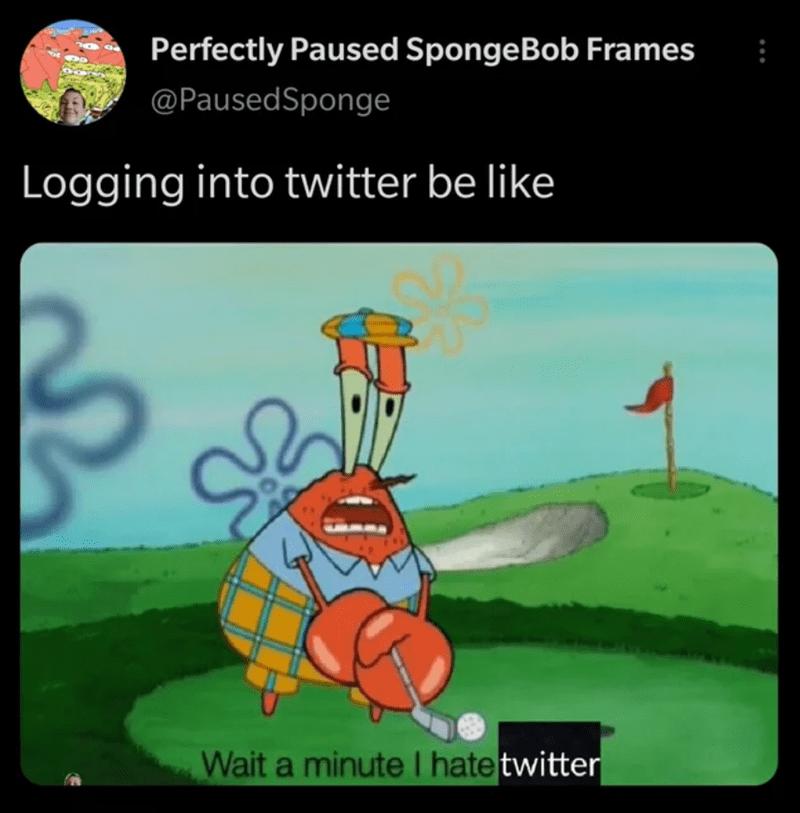 Organism - Perfectly Paused SpongeBob Frames @PausedSponge Logging into twitter be like Wait a minute I hate twitter