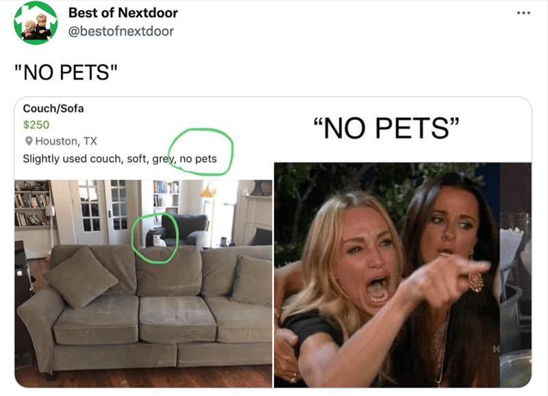 """Font - Product - Best of Nextdoor @bestofnextdoor """"NO PETS"""" Couch/Sofa """"NO PETS"""" $250 O Houston, TX Slightly used couch, soft, grey, no pets"""