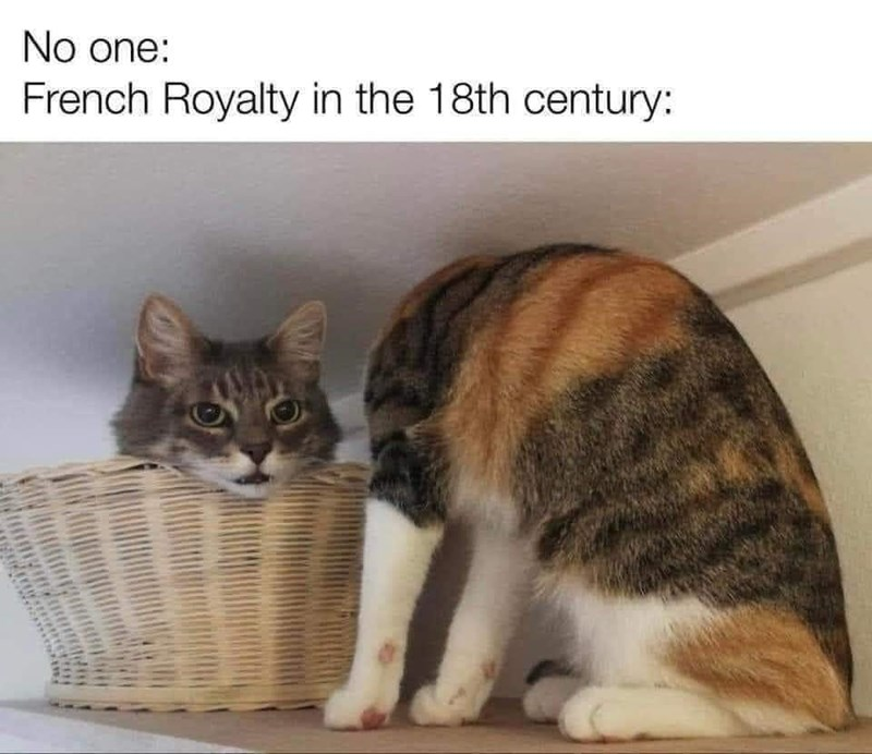 Cat - No one: French Royalty in the 18th century: