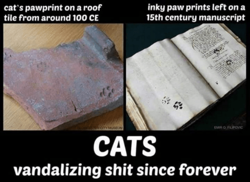 Font - inky paw prints left on a 15th century manuscript cat's pawprint on a roof tile from around 100 CE CY MUSEUM EMRO FLPOVIC CATS vandalizing shit since forever