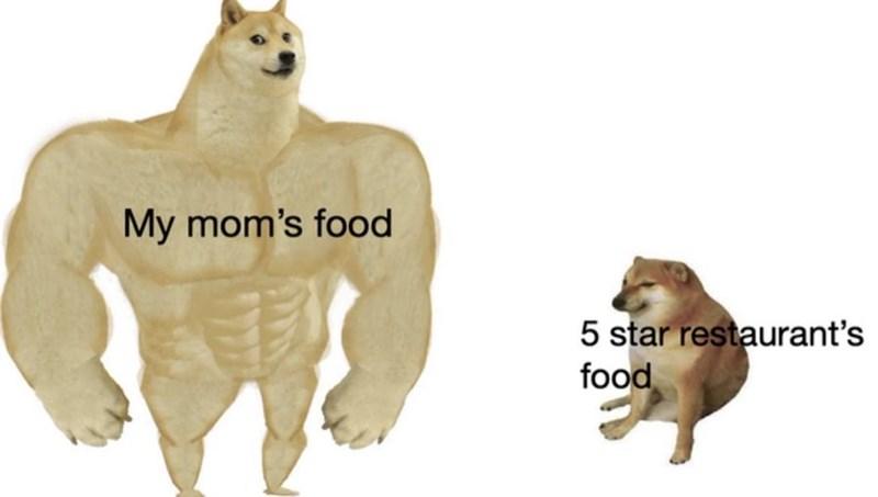 Vertebrate - My mom's food 5 star restaurant's food