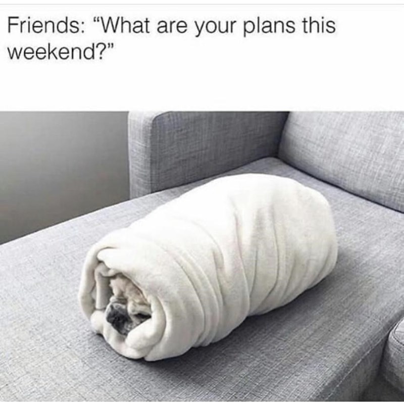 """Furniture - Friends: """"What are your plans this weekend?"""""""
