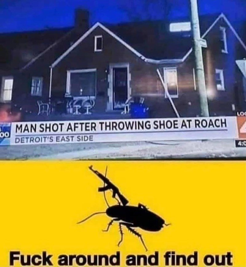 Insect - LOC MAN SHOT AFTER THROWING SHOE AT ROACH 00 DETROIT'S EAST SIDE 4:0 Fuck around and find out