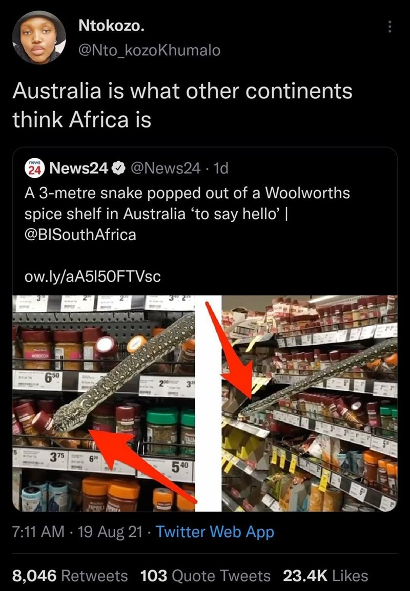 Font - Ntokozo. @Nto_kozoKhumalo Australia is what other continents think Africa is 24 News24 O @News24 · 1d A 3-metre snake popped out of a Woolworths spice shelf in Australia 'to say hello'   @BISouthAfrica ow.ly/aA5I50FTVsc HOROCC 50 3 375 60 540 Aula PAPRIKA 7:11 AM · 19 Aug 21 · Twitter Web App 8,046 Retweets 103 Quote Tweets 23.4K Likes