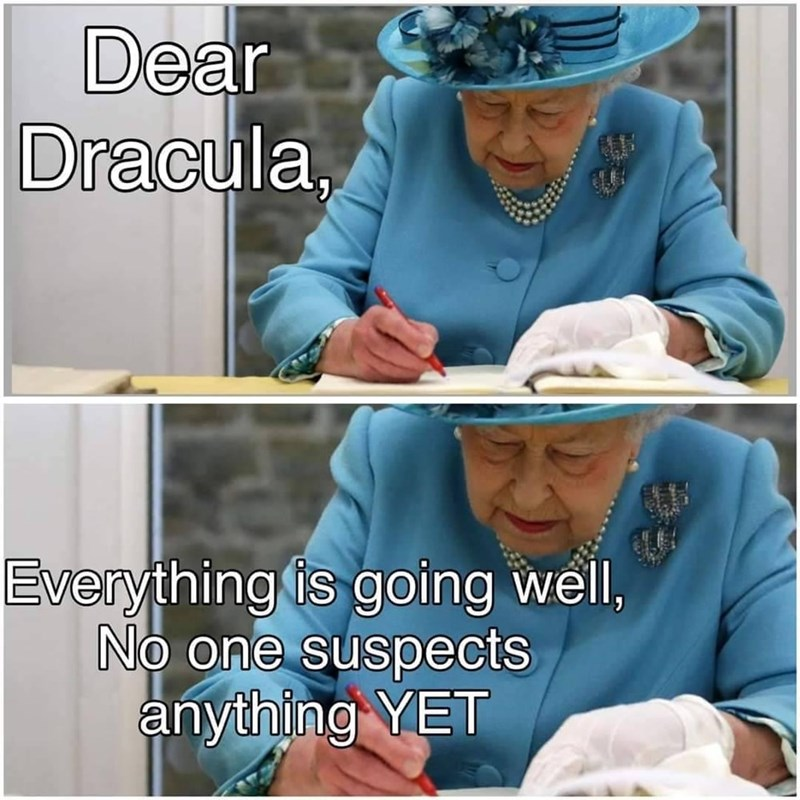 Clothing - Dear Dracula, Everything is going well, No one suspects anything YET