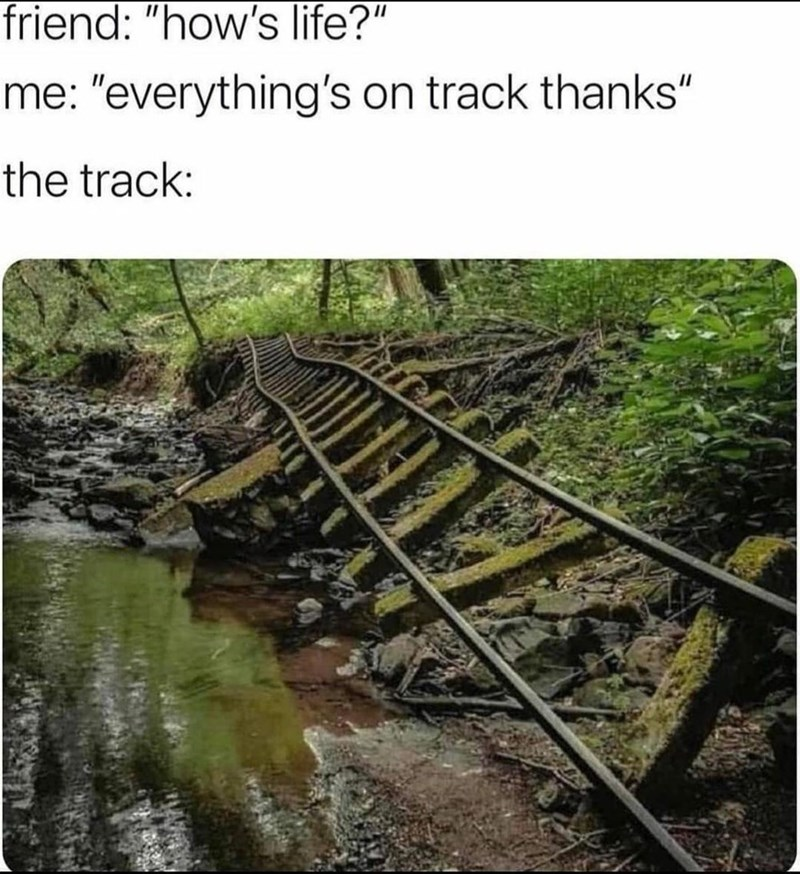 """Plant - friend: """"how's life?"""" me: """"everything's on track thanks"""" the track:"""