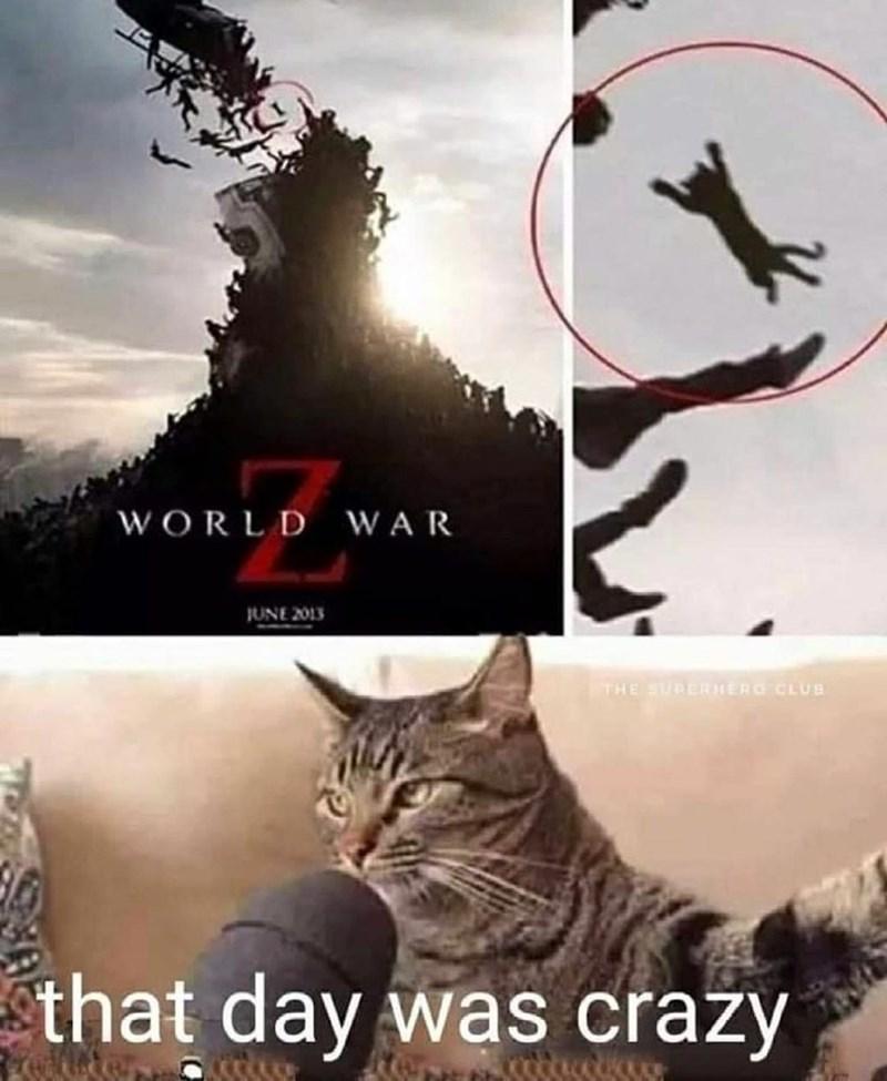 Cat - WORLD WAR JUNE 2013 THE SURERHERG CLUB that day was crazy