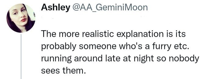 Rectangle - Ashley @AA_GeminiMoon The more realistic explanation is its probably someone who's a furry etc. running around late at night so nobody sees them.
