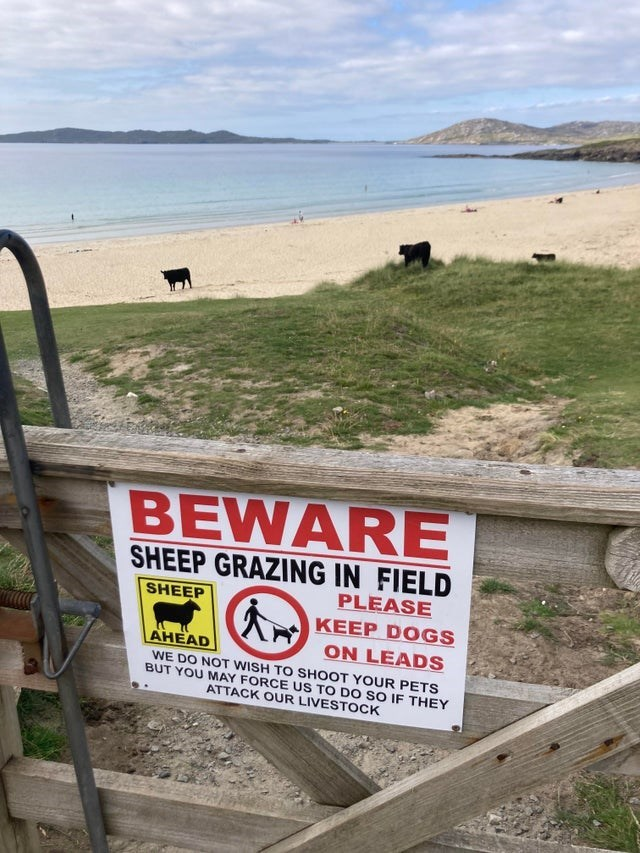 Water - BEWARE SHEEP GRAZING IN FIELD PLEASE SHEEP KEEP DOGS ON LEADS AHEAD WE DO NOT WISH TO SHOOT YOUR PETS BUT YOU MAY FORCE US TO DO SO IF THEY ATTACK OUR LIVESTOCK