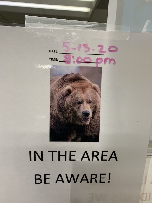Brown bear - 5-13.20 8:00pm DATE: TIME: IN THE AREA BE AWARE!