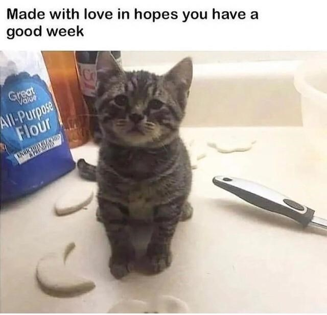 Cat - Made with love in hopes you have a good week Co Great Value All-Purpose Flour