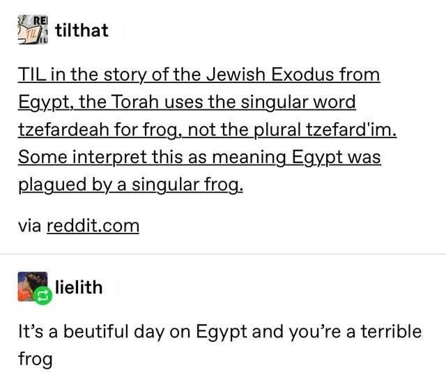 Font - REI tilthat TIL in the story of the Jewish Exodus from Egypt, the Torah uses the singular word tzefardeah for frog, not the plural tzefard'im. Some interpret this as meaning Egypt was plagued by a singular frog. via reddit.com lielith It's a beutiful day on Egypt and you're a terrible frog