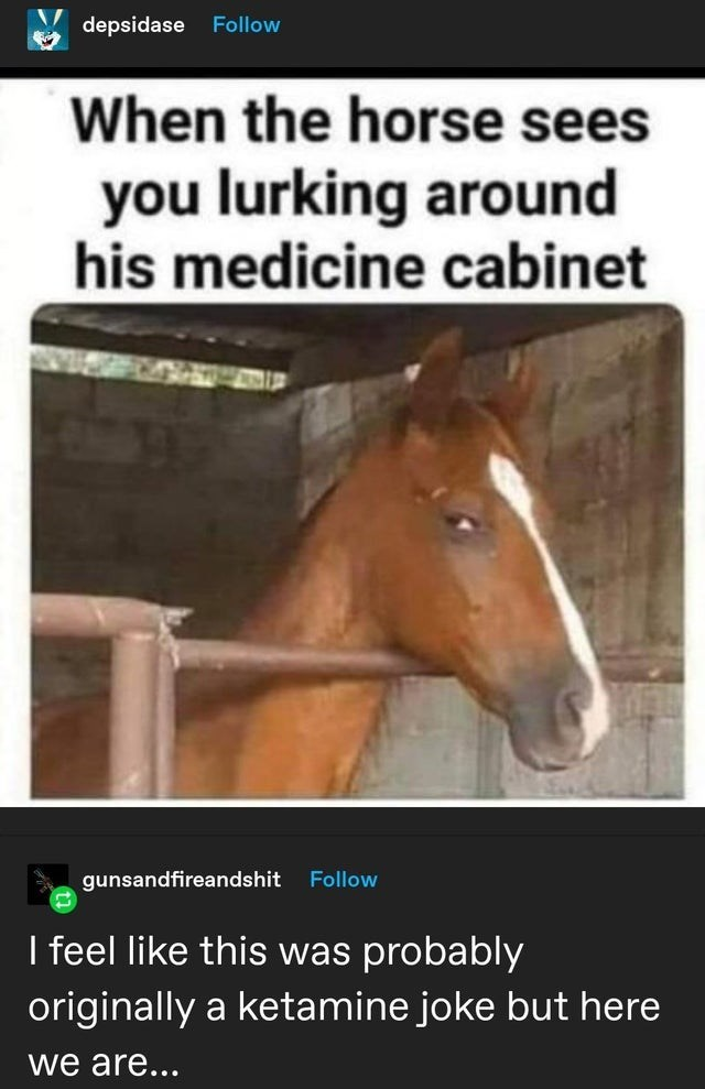 Horse - depsidase Follow When the horse sees you lurking around his medicine cabinet gunsandfireandshit Follow I feel like this was probably originally a ketamine joke but here we are...