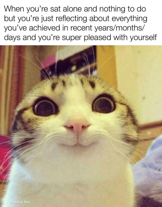 Cat - When you're sat alone and nothing to do but you're just reflecting about everything you've achieved in recent years/months/ days and you're super pleased with yourself Bipolar Inc