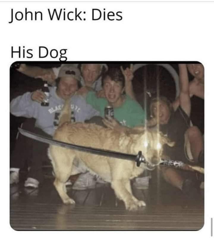 Product - John Wick: Dies His Dog BLAC