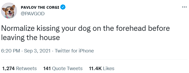 Font - PAVLOV THE CORGI ... @PAVGOD Normalize kissing your dog on the forehead before leaving the house 6:20 PM - Sep 3, 2021 · Twitter for iPhone 1,274 Retweets 141 Quote Tweets 11.4K Likes