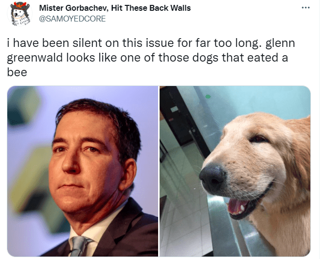 Nose - Mister Gorbachev, Hit These Back Walls @SAMOYEDCORE i have been silent on this issue for far too long. glenn greenwald looks like one of those dogs that eated a bee
