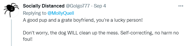 Font - Socially Distanced @Golgo777 - Sep 4 ... Replying to @MollyQuell A good pup and a grate boyfriend, you're a lucky person! Don't worry, the dog WILL clean up the mess. Self-correcting, no harm no foul!