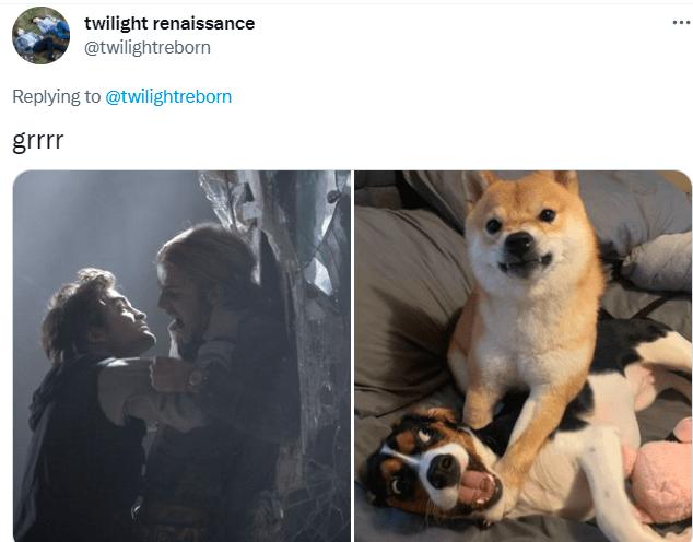 Dog - twilight renaissance @twilightreborn ... Replying to @twilightreborn grrr