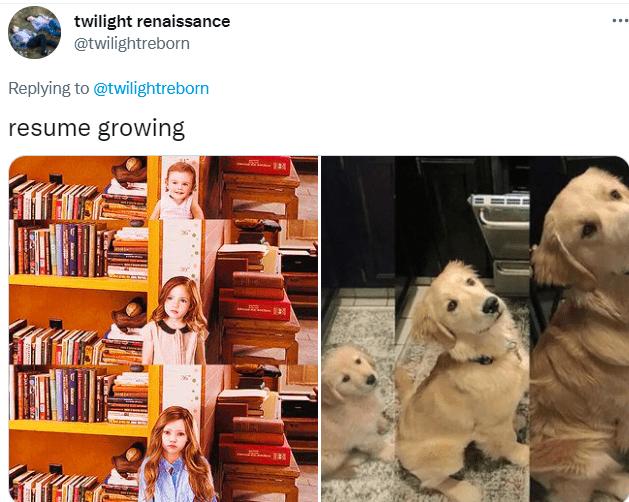 Photograph - twilight renaissance @twilightreborn ... Replying to @twilightreborn resume growing TAM 2