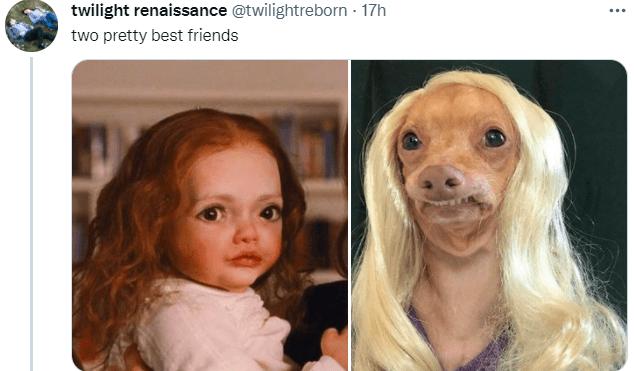 Nose - twilight renaissance @twilightreborn · 17h two pretty best friends