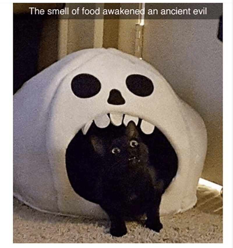 Head - The smell of food awakened an ancient evil